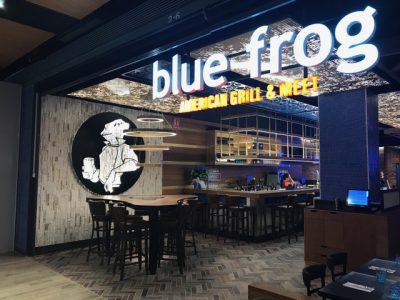Blue Frog Equinoccio
